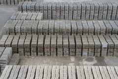 Fresh perpends aligned drying on the ground Royalty Free Stock Photography