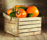 Fresh persimmons with leafs Stock Photography