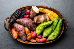 Fresh peruvian Latin American vegetables caigua, sweet potatoes, black corn, camote, yuca. Top view stock images