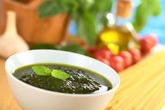 Fresh Pesto Made of Basil Stock Image