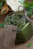 Fresh pesto sauce Royalty Free Stock Images
