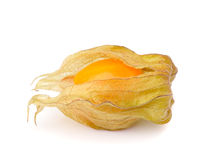 Fresh physalis cape gooseberry  on white Royalty Free Stock Images