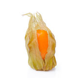 Fresh physalis cape gooseberry  on white Stock Photography