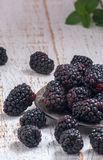 Fresh picked blackberries on a wooden table Stock Photography