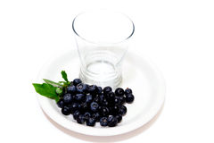 Fresh picked Blueberries and empty glass Royalty Free Stock Images