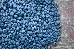Fresh picked blueberries Royalty Free Stock Photo