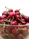 Fresh picked cherries Stock Photography