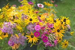 Fresh picked flowers Royalty Free Stock Photography