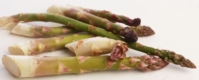 Fresh picked garden Asparagus stock photography