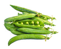 Fresh picked green pea pods isolated Stock Photo