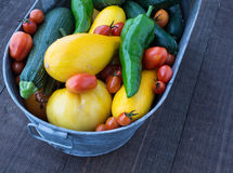 Fresh picked home garden vegetables Royalty Free Stock Image