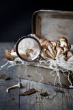 Fresh picked mushrooms on vintage tin box with frayed cloth on rustic table Royalty Free Stock Photos
