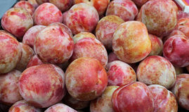 Fresh Picked Nectarines at the Farmers' Market Stock Photos