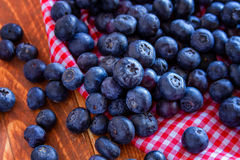 Fresh picked organic blueberries Royalty Free Stock Photo