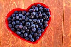 Fresh picked organic blueberries Royalty Free Stock Image