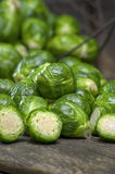 Fresh picked organic Brussels sprouts Royalty Free Stock Image