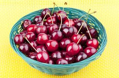 fresh picked organic cherries Royalty Free Stock Photography