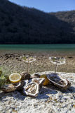 Fresh picked oysters on sea coast with silver glasses Stock Image