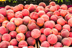 Fresh picked peaches on display Royalty Free Stock Image