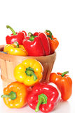 Fresh picked peppers from garden. Shot of fresh picked peppers from garden Royalty Free Stock Photography