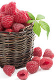 Fresh picked raspberries in a woven basket Stock Images
