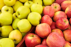 Fresh picked red and yellow apples. In bin at farmers market Stock Photography