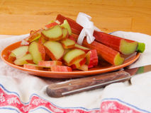 Fresh picked Rhubarb royalty free stock images
