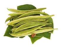 Fresh picked Runner Beans Royalty Free Stock Image