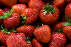 Fresh-picked Strawberries Royalty Free Stock Images