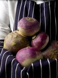 Fresh picked Swedes and Turnips Stock Photo
