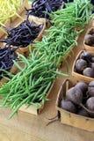 Fresh picked vegetables on burlap Stock Photos