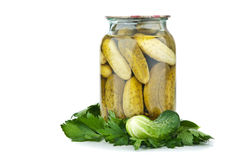 Fresh and pickled cucumber Royalty Free Stock Image
