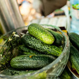 Fresh pickled cucumbers on the table. Pickled cucumbers in glass bowl Stock Photos
