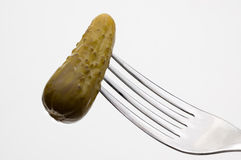 Fresh pickled gherkin. Stock Photos