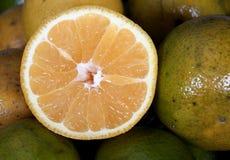 Fresh pieces of citrus fruits Stock Photos