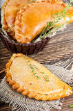 Fresh pies with meat Stock Image