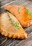 Fresh pies with meat and cheese Royalty Free Stock Images