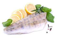 Fresh pikeperch fillet Royalty Free Stock Photos