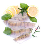 Fresh pikeperch fillet Royalty Free Stock Photo