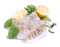 Fresh pikeperch fillet Royalty Free Stock Image