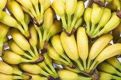 Fresh pile of bananas Royalty Free Stock Images