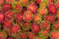 Fresh pile Rambutan from Rayong Thailand use for background desi Royalty Free Stock Photo