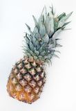 Fresh pine apple Royalty Free Stock Image