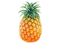 Fresh pineapple Royalty Free Stock Images