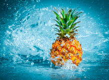Fresh pineapple stock photos