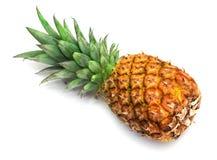 Fresh pineapple royalty free stock photography
