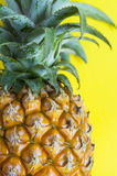 Fresh pineapple on the background. Pineapple on the background table Stock Photography