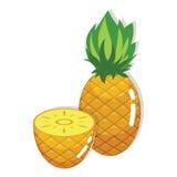 Fresh Pineapple Fruit. Cartoon Illustration Royalty Free Stock Photos