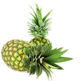 Fresh pineapple fruit Royalty Free Stock Photography