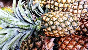 Fresh pineapple in a fruit shop royalty free stock image